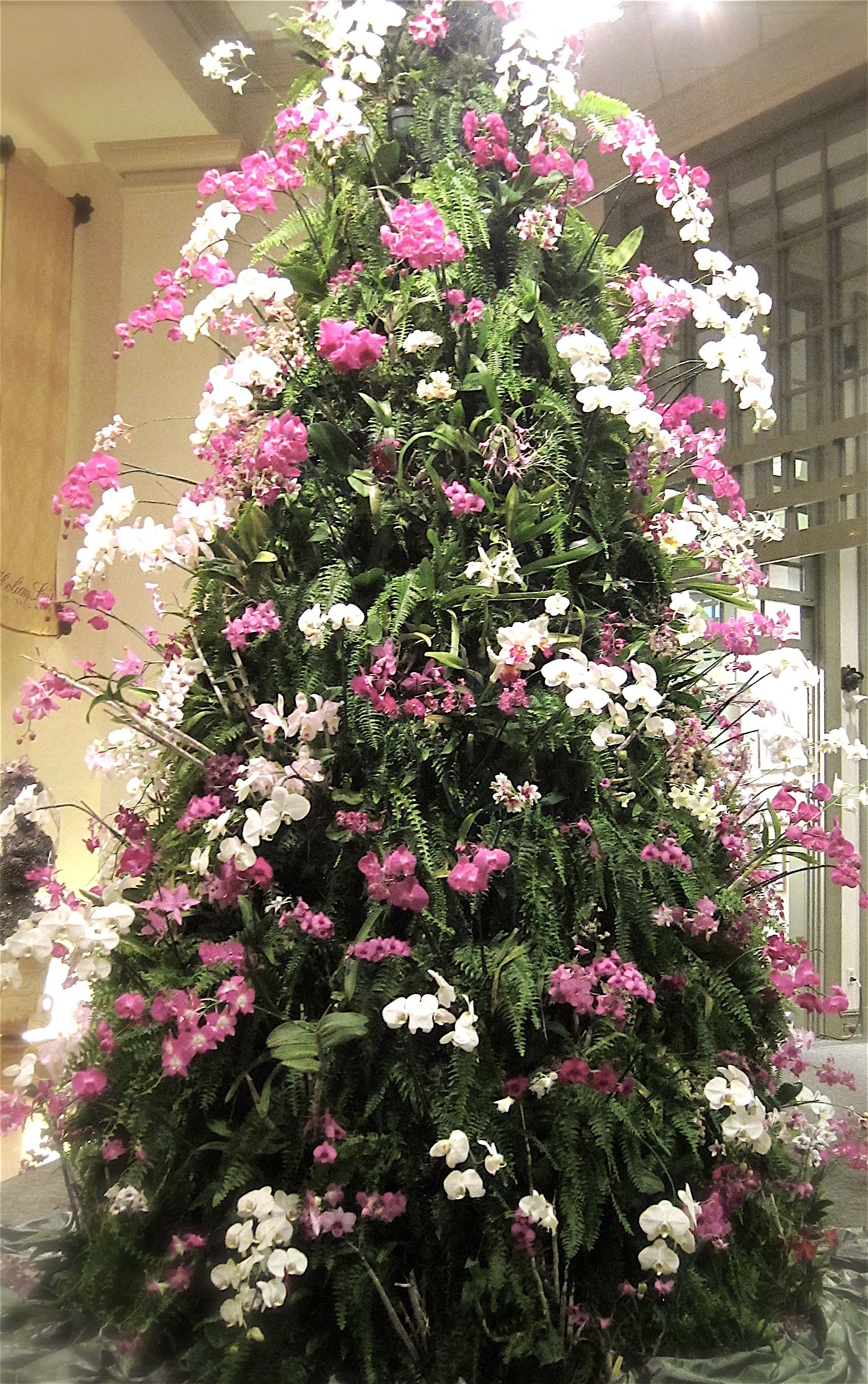 orchid christmas tree at daniel stowe botanical garden pattern