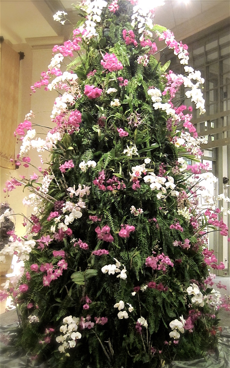 Orchid Christmas Tree At Daniel Stowe Botanical Garden Pattern Me Mommy
