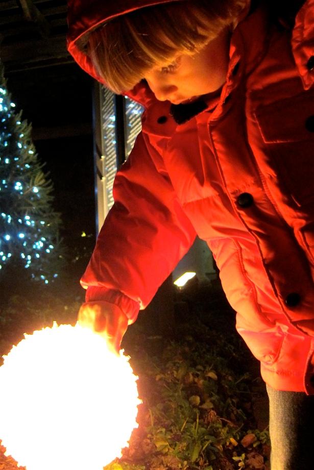 Lights Display at Daniel Stowe Botanical Gardens