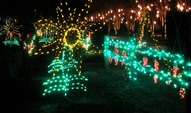 Light Display at Daniel Stowe Botanical Gardens