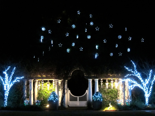 Light Display at Daniel Stowe Botanical Garden