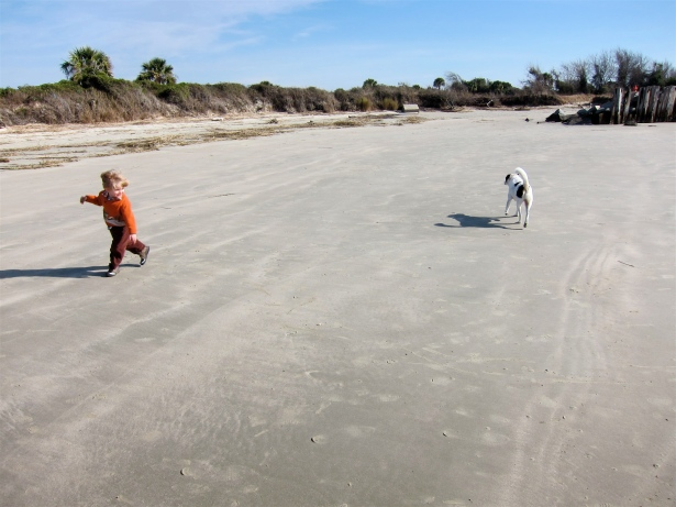 Beach Tag at Sullivan's Island