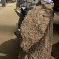 Slab O' Granite