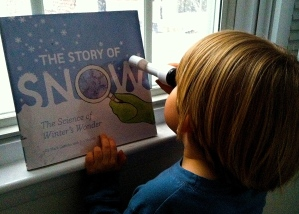 The Story of Snow: The Science of Winter's Wonders