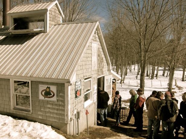 Maine Maple Sunday Tours